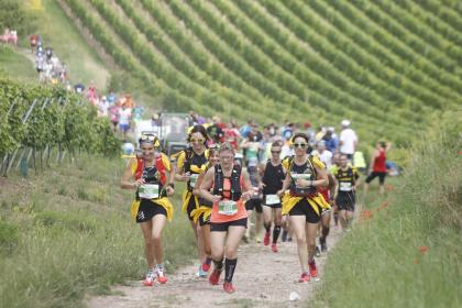 Communauté de communes de la Région de Molsheim-Mutzig