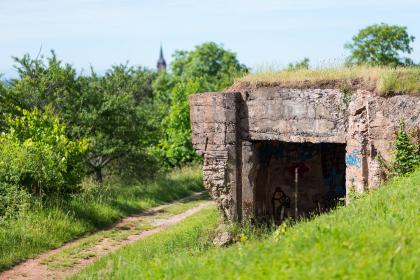 Vue sur Uffholtz depuis le vignoble © ILLPROD