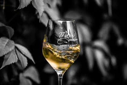 Vins Meyer Jean-Luc