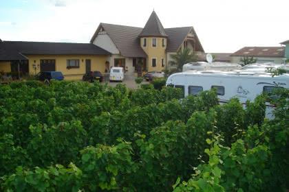 Aire de camping-cars, Pfaffenheim, Pays de Rouffach, Vignobles et Châteaux, Haut-Rhin, Alsace