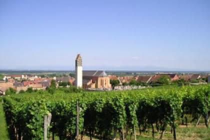 Pfaffenheim, Pays de Rouffach, Vignobles et Châteaux, Haut-Rhin, Alsace