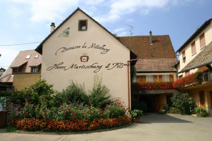 Domaine du Mittelburg, Pfaffenheim, Pays de Rouffach, Vignobles et Châteaux, Haut-Rhin, Alsace
