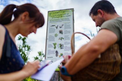Panorama sur Rosheim